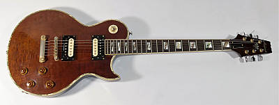 E-Gitarre ARIA Pro II PES-PL