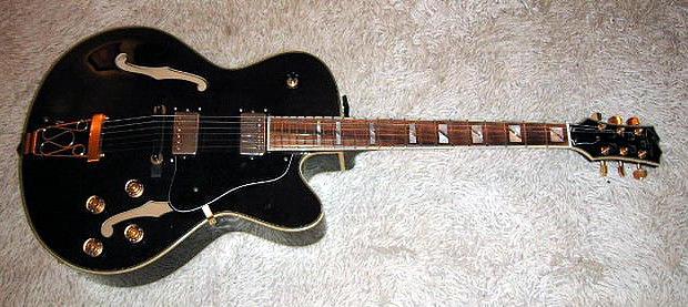 E-Gitarre CANE 43/806, gebraucht