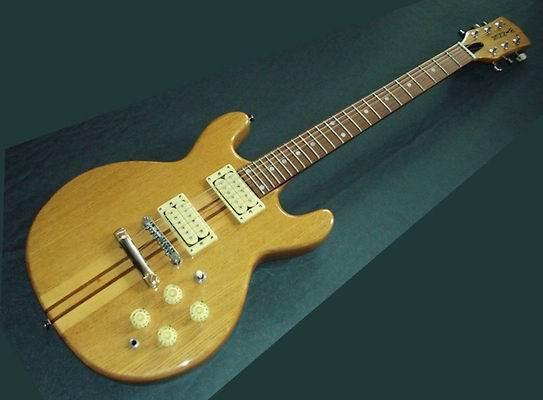 E-Gitarre C.G. WINNER