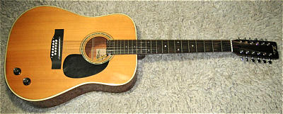 Westerngitarre FENDER F55-12