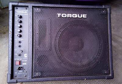 Aktiv-Monitor TORQUE TM100P