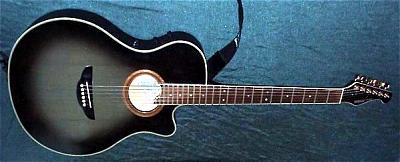 E-Gitarre YAMAHA APX-8C