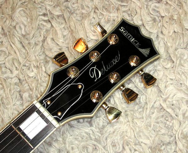 E-Gitarre SAMICK